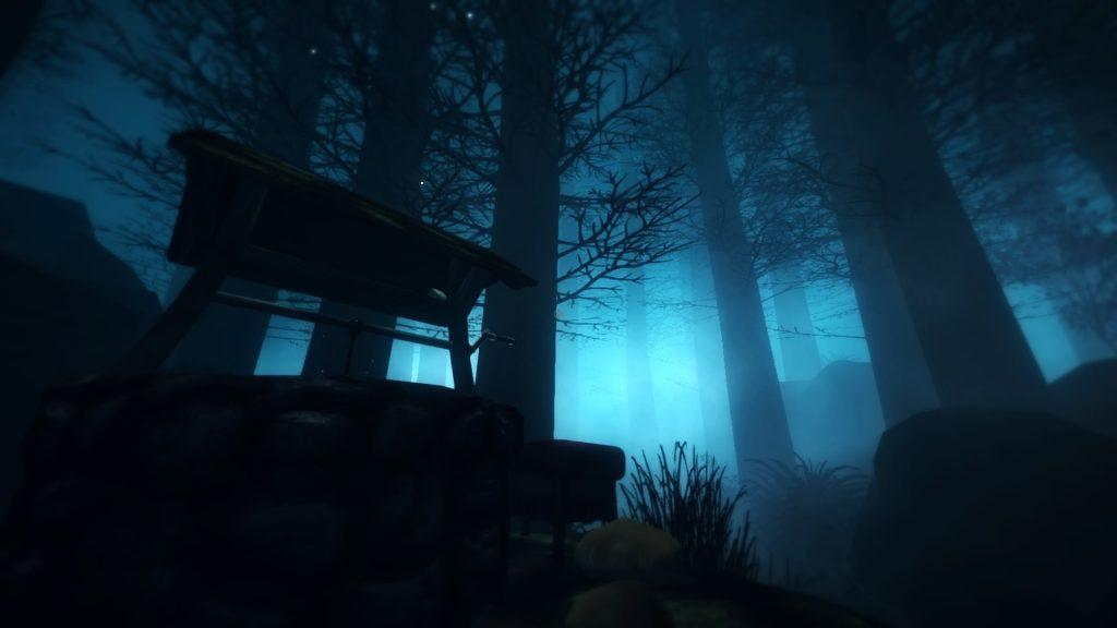 Among the Sleep blue forest