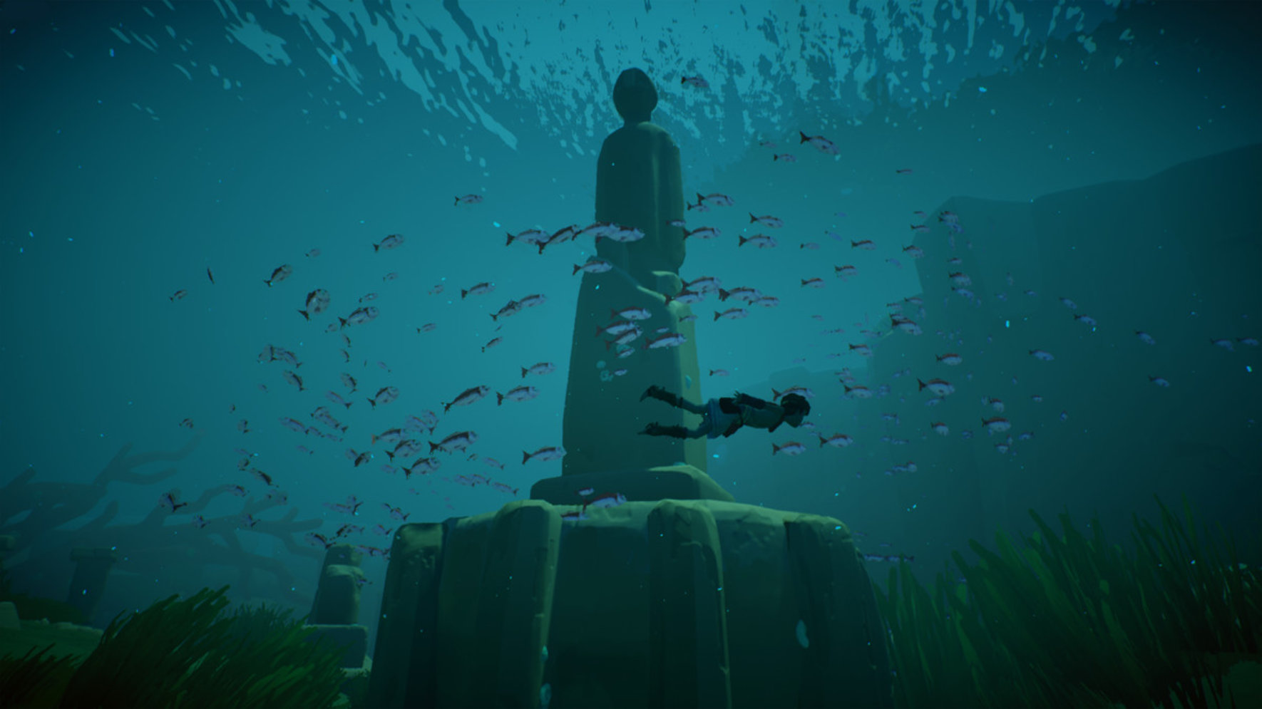 Rime swimming with fish
